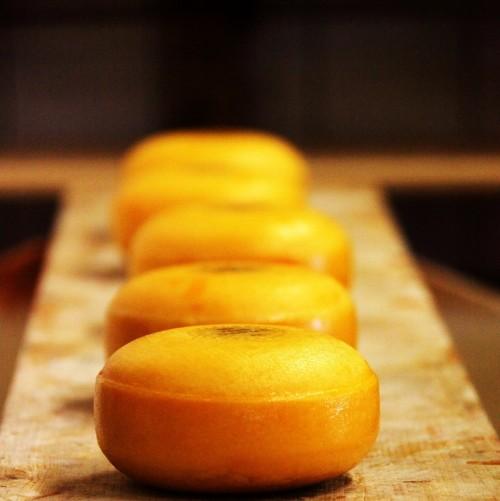 <p>İsmini ilk üretildiği yer olan Hollanda`nın Gouda şehrinden almaktadır. Yapı itibariyle yarı sert ve ısındıkça uzayan bir dokuya sahiptir. Yemeklerde kullanılmasının yanı sıra peynir tabaklarında da sıklıkla kullanılan bir çeşittir.</p>